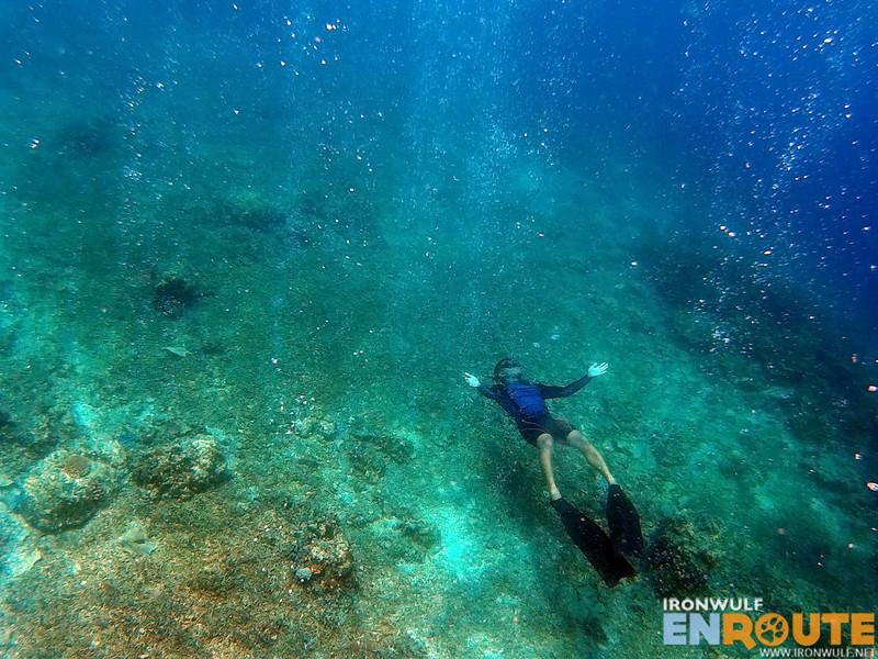 In a breathing reef