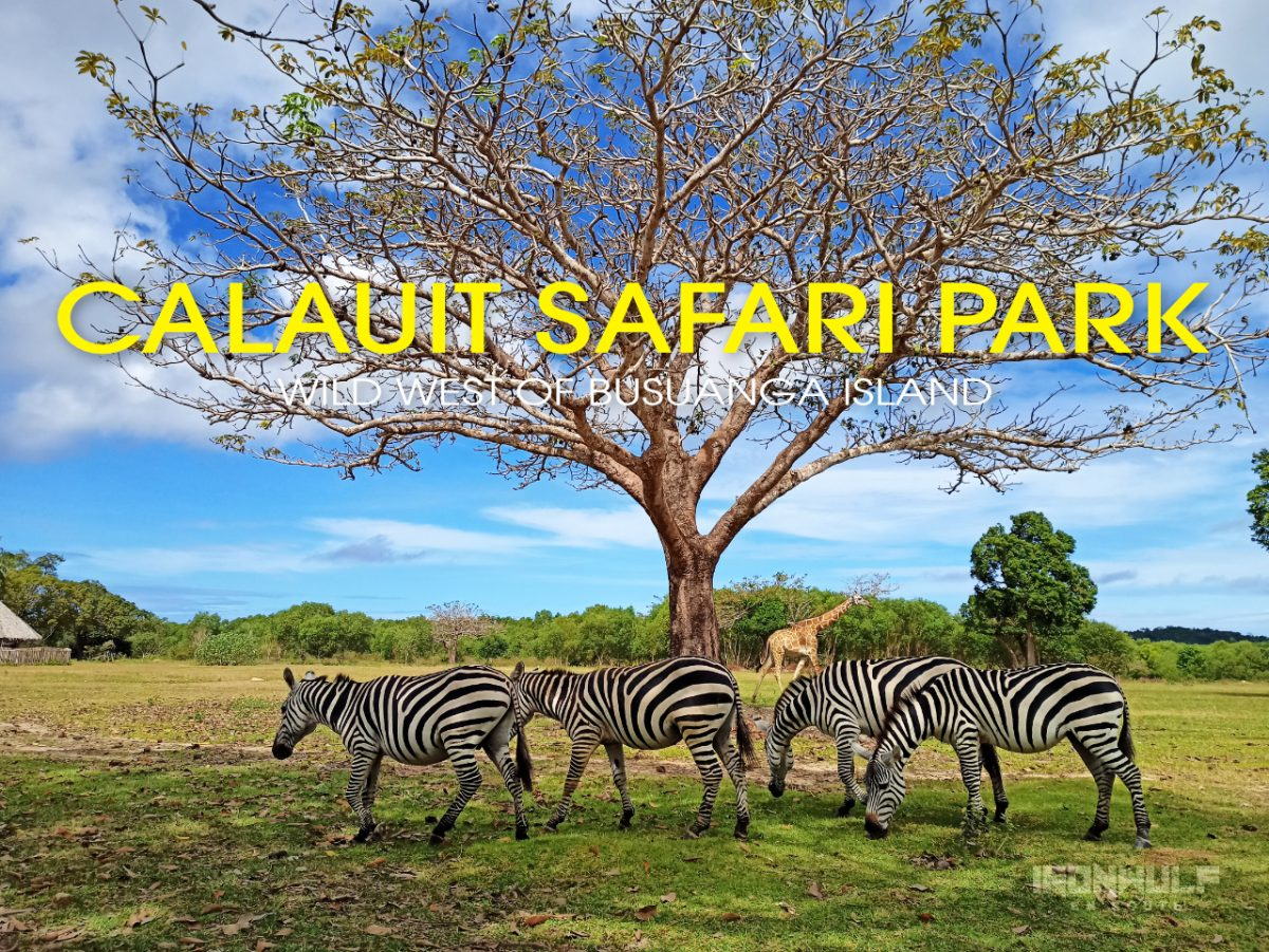 Calauit Safari Park