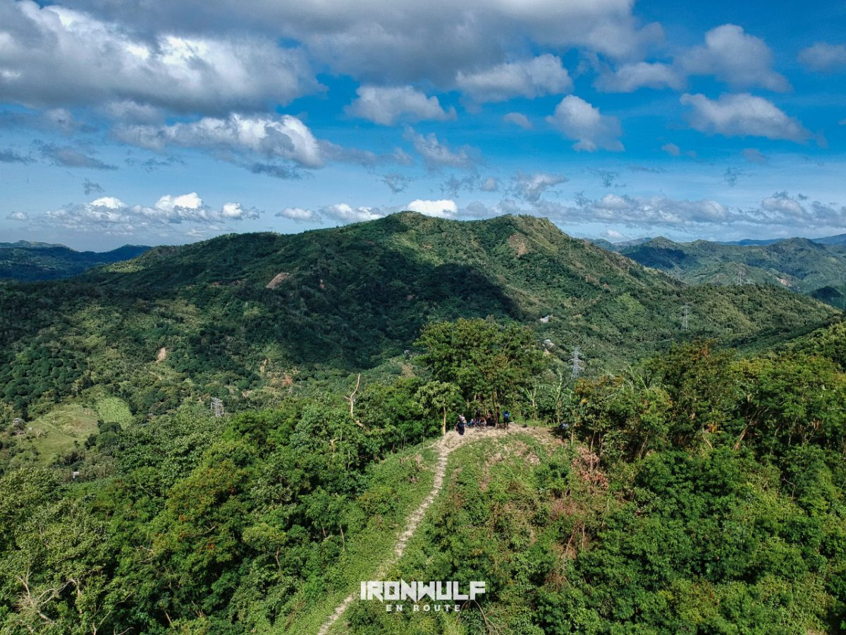 Summit of Malvar's Peak at Mt Purro Nature Reserve